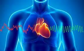 L'intelligence du coeur et la cohérence cardiaque selon David Lefrançois